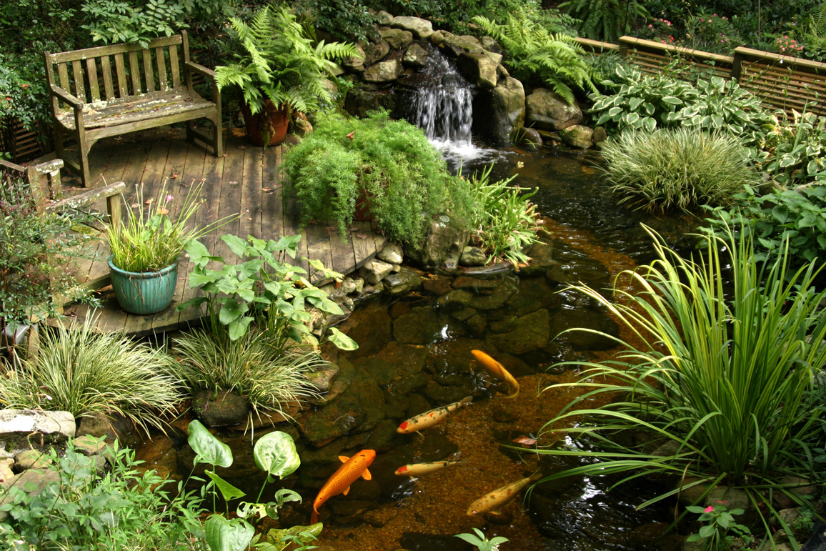 .Valleywide-Ponds-Bringing-Nature-and-Tranquility-To-Your-Backyard